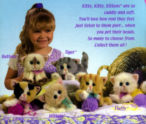 Kitty Kitty Kittens Remembered by veganxcupcake
