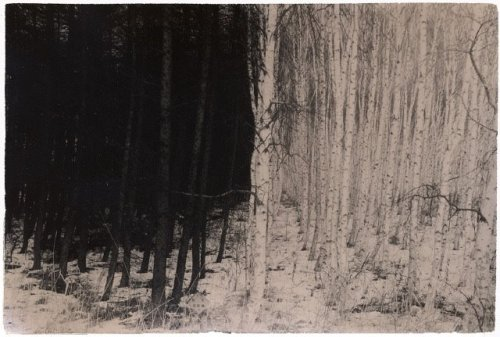 "Masao Yamamoto ""I photograph to capture existing phenomena. Thinking about this day by  day, the mountain ceases to be a mountain, the cloud is no cloud, things  left behind are not left behind… maybe I begin to see what only I  can see."" — Masao Yamamoto [read more] (via nearlya:blackv)"