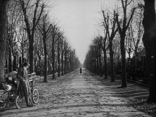 "liquidnight:  Still from the final scene of The Third Man,   1949, dir. Carol Reed ""The final scene in The Third Man is a long, elegiac sigh. It almost did not exist. Selznick and Greene originally wanted a happy ending. (Greene originally wrote, ""… her  hand was through his arm""). Reed convinced Greene he was wrong. The movie ends as it begins, in a cemetery, and then Calloway gives Holly a  ride back to town. They pass Anna walking on the roadside. Holly asks to  be let out of the jeep. He stands under a tree, waiting for her. She  walks toward him, past him, and then out of frame, never looking. After a  long pause, Holly lights a cigarette and wearily throws away the match.  Joseph Cotten recalled later that he thought the scene would end sooner. But Reed  kept the camera running, making it an unusually long shot, and  absolutely perfect. Of all the movies I have seen, this one most completely embodies the  romance of going to the movies. I saw it first on a rainy day in a tiny,  smoke-filled cinema on the Left Bank in Paris. It told a story of  existential loss and betrayal. It was weary and knowing, and its  glorious style was an act of defiance against the corrupt world it  pictured."" — Roger Ebert"