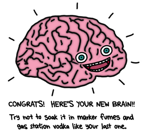 afuriouspipedream:  via www.nataliedee.com fresh new brain    Back by Popular Demand!    Coincidentally, this week is Brain Awareness Week, and here in Eugene it's hosted by the Brain Development Lab at the University of Oregon.  There's lots of free brain-themed events!  If you're in the area, why not attend the FREE Brain Awareness Expo at the WOW Hall on Saturday, March 10 from 1 to 4 pm?  I'll see you there.  BRAINS ARE AWESOME  UPDATE 3.10.12:  Nate and I went and I got to HOLD A REAL HUMAN BRAIN IN MY HANDS!  Well, half of one anyway.  And it was pickled in an icky chemical so I had to wear gloves.  It belonged to a little old lady!  I also held a sheep brain and a dog brain.  And a guy was poking at a cow eyeball so we could see how it worked.  And they made a cockroach leg dance to the beat of a song.  And my picture might be in the Oregon Daily Emerald!  Gawd I am such a little kid. :)