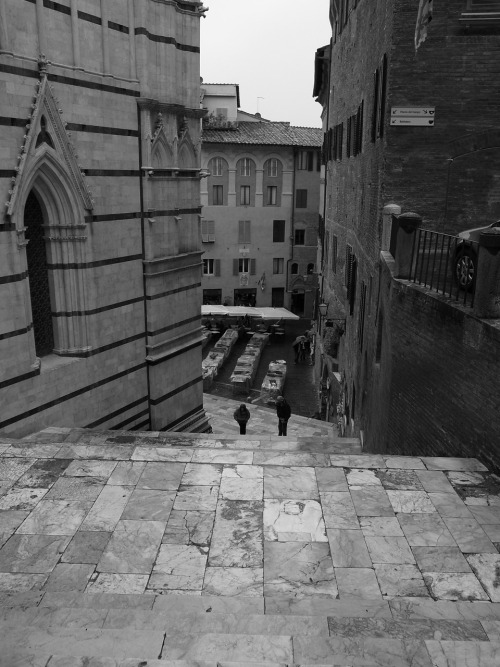 scavengedluxury:  Siena. Steps behind the cathedral. Not a good place to lose your footing on a rainy day!