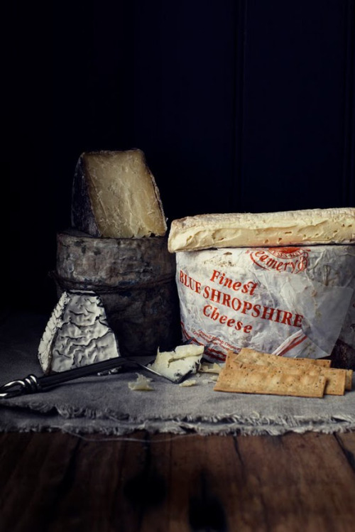 browndresswithwhitedots:    finest blue shropshire cheese 1.bp.blogspot.com