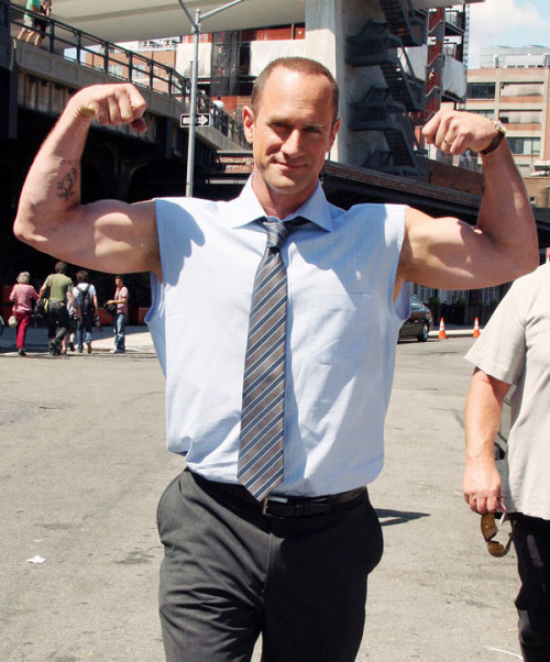 rowdymike:  ruggerdan:  wardkelly:  Chris Meloni  Chris is so sexy  I concur!
