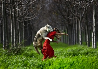 danielholter:  Little Red Riding Hood's Demise
