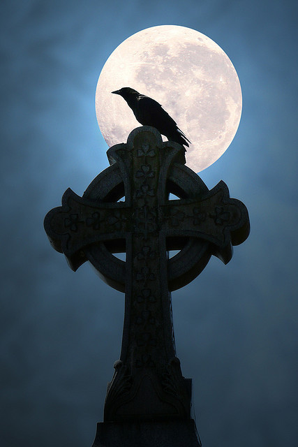 herebewitches:  Moonlight Crow (by Anne Marie McCaffrey)