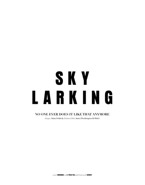 THE BLOCK//NOV 2010//SKY LARKING