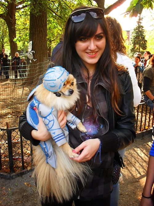 Tron. Halloween Dog Parade in Tompkins Square Park, Manhattan. The Halloween Dog Parade is the largest event of its kind and happens annually in Tompkins Square Park. This year it happened on October 23rd, 2010.