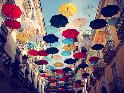Umbrellas for the rainy season :)