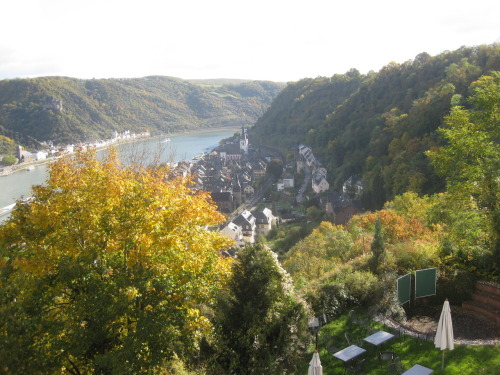 Day 53, Clogs: This is the village of Sankt Goar am Rhein, Germany. It's about 3 hours from Nijmegen by car. (If you know German geography, it's an hour west of Frankfurt.)  I have at least five pictures like this from various viewpoints, including the hotel room balcony and the castle grounds, mostly varying in the amount of sunlight and the occlusion of townparts by that pesky tree. The hotel we stayed at is adjacent to Burg Rheinfels, a 13th Century castle. The church the wedding was at is again visible, this time poking out as the tallest structure in town. Across the Rhine River is Sankt Goarshausen, which appears to be very similar to Sankt Goar and it's just a short ferry trip away.