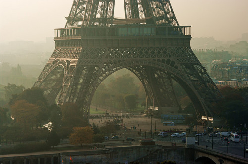 film-grain:  Paris the Eiffel tower in the morning in autumn (by Pascal POGGI)