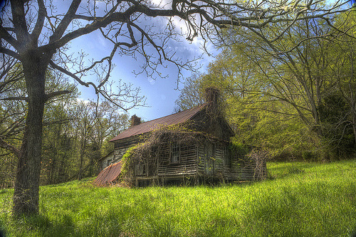 Abandoned house in forest, Virginia, USA
