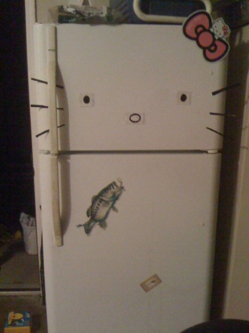 Hello Fridge! /  nicksaephanh