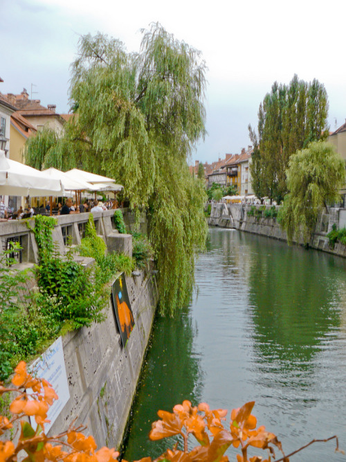 Ljubjana River, Slovenia by toucego