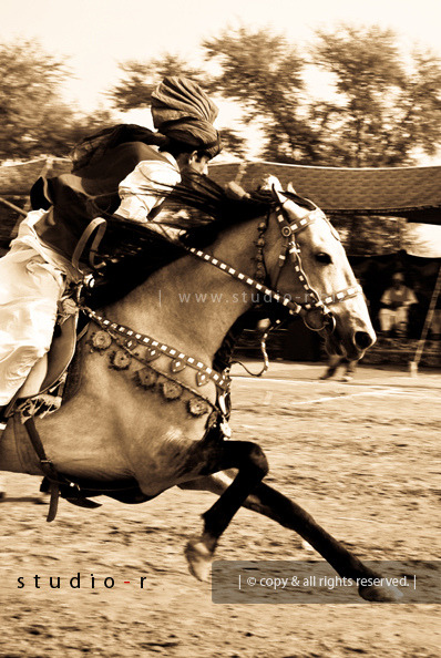 pakistanpassion:  Horse Power (by RzzA™) Faisalabad, Pakistan