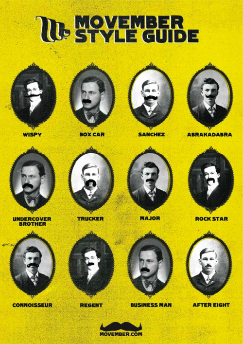 Movember style guide. Choose your stache for raising awareness (and cash) for men's health issues.  More Movember info: Click here.  (source: Movember)