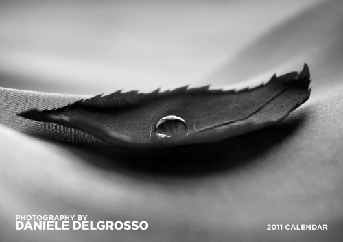 Photography Calendar 2011 by `dandelgrosso
