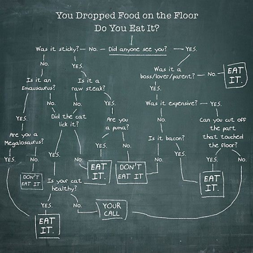 Dropped your food on the floor. Do you eat it?