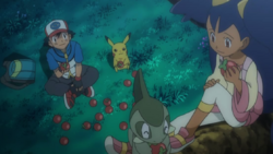 kibagolivesinhair:  Noming on Apples with Ash, Iris, and Pikachu.  YOU KEPT  AFEW AND HID THEM IN ME >:O