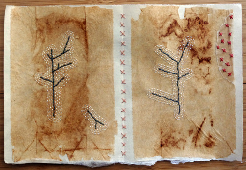 Page from the Book of Broken Branches by Patti Roberts-Pizzuto http://missouribendstudio.blogspot.com/2010/10/sticks-and-stillness.html