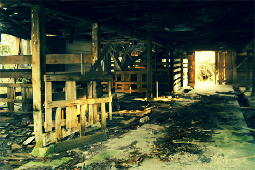 Abandoned Beauty Broken and desolate, ruins scattered with care.Abandoned and forgotten, few know that you are there.You caught me with your beauty of glass shards and twisted limbs.Swept across your magnificent floor, as wonderful to me as seashells sprinkled on the shore. -ResaMy  fiance and I stumbled upon this beautiful wreckage on the drive to the  Trail of History a few weeks ago. We parked at a corner stand and walked  down the street eating rock candy until we reached this wonder. I was  so glad we stopped. :]