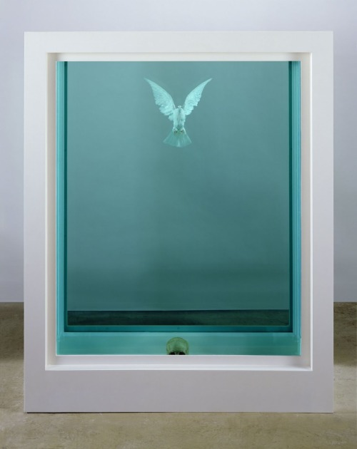 """The Inescapable Truth"" by Damien Hirst I love how the dove seems like its floating up from the skull, like a spirit floating into the heavens out of a body."