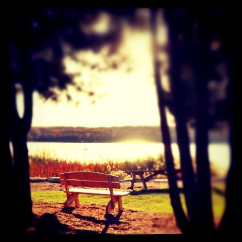 Bench - Door County, Wisconsin - Taken with D90 edited with Tilt Shift Generator and Instagram.