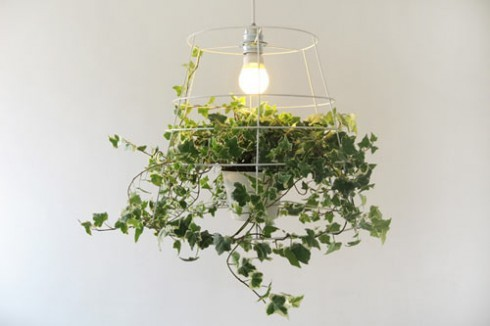 b5media:  Want some nature in your home? Try the Photosynthesis Lamp. It's the perfect way to bring some life to your living space in the deadly fall and winter. Explains Blisstree:  The lamp is a wire that has a space for a vine in the center. The vine grows around the  lamp, creating a natural shade…You  can't buy the lamp, but hopefully we'll be able to at some point this  winter.  But would we be able to keep the vine alive? I've killed just about every other plant I've owned.  Do I want this? Of course I do.