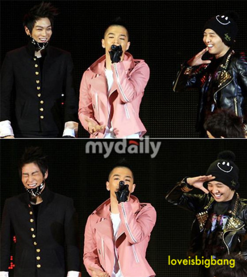 mrs-kwon-ji-yong:  loveisbigbang:  what soo funny with taeyang?? kekeke~  Dorks
