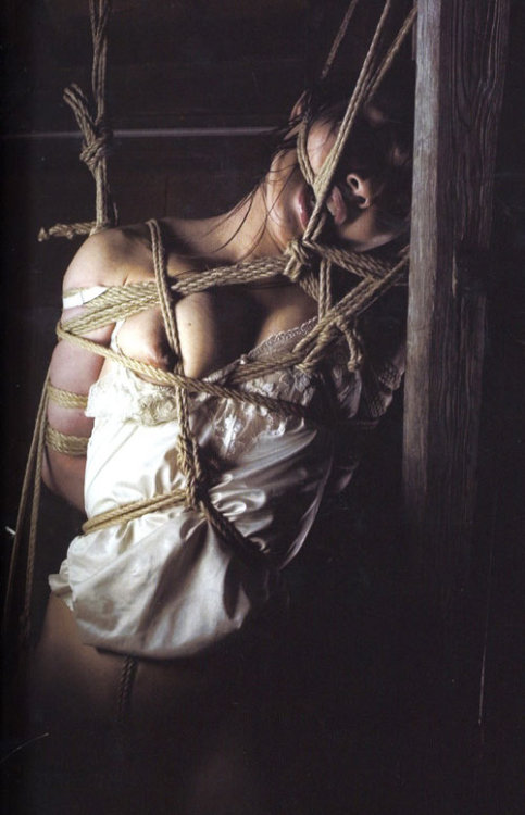shibari  shibari shibari shibari  I love the feeling of Japanese rope bondage, because it feels like my body is being contained. My insides are secure. I'm not going to just fall apart into pieces. I am safe. The knots crossing across my body. The rope digging into my skin. Firmly being held, unable to move. Intricate Shibari is in my heart cavity.