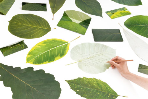 leaf letter by neo-green and eding:post