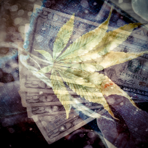 fuckyeahweed:  multiple exposures - $$/mj (allison nazzareno)