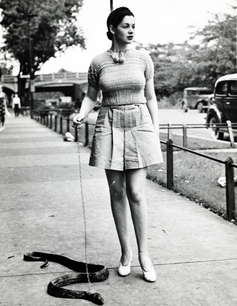 vintagegal:  Burlesque dancer Zorita walks her pet snake, 1937