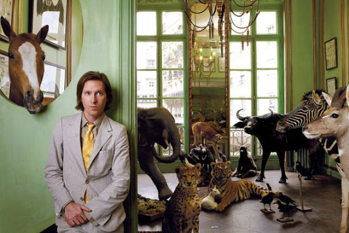 Wes Anderson seeks Moon Rise Kingdom cast Wes Anderson is lining up a killer cast for his new film Moon Rise Kingdom. With  Bruce Willis, Edward Norton, Bill Murray, Frances McDormand and Tilda  Swinton all interested in working with the maverick director, Anderson's  latest is quickly turning into a future must-see.