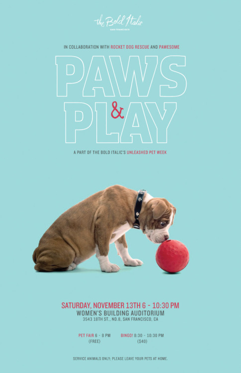 EVERYONE! Please please please come to the super-fun Paws n' Play benefit for Rocket Dog Rescue this Saturday, Nov. 13 at The Women's Building in the Mission!  From 6 to 8 pm. there's a FREE pet fair with all sorts of awesome vendors and tons of vegan food and drinks! We're talking vegan sandwiches from Ike's Place, cupcakes from Fat Bottom Bakery and Sugar Beat Sweets, and cookies made with Eat Pastry Cookie Dough! There will also be tons of beer, wine, a raffle with awesome prizes, great vendors (get your holiday gifts!), adoptable ADORABLE dogs, and MORE!  Then, from 8:30 to 10:30 p.m. there will be BINGO! Served up with vegan chili pie, cornbread, and the best fucking prizes ever, including a $100 gift certificate to Millennium, Southwest plane tickets, and a signed SF Giants cap from MVP Édgar Rentería. Seriously, you gotta be there so COME! Please! Rocket Dog is so desperate for funds right now. We want to keep up our legacy of saving the dogs that nobody else can—your pit bulls, your tripods, your one-eyed chihuahuas! Play Bingo for those who cannot! I'm crazy! See you there! Etc.! This benefit is sponsored by The Bold Italic and Pawesome because they are the raddest best!