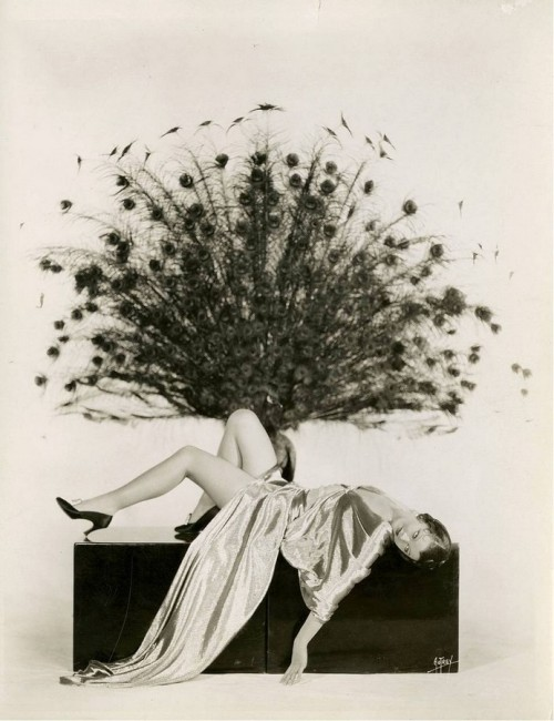 Myrna Loy * by Max Munn Autrey via Vintage Photography