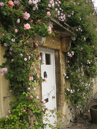 Today's doorway: Cotswold stone doorway in Lacock, Wiltshire, from Aussie Stompy