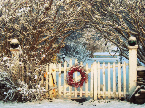 ohhelloyouprettythings:  Winter Welcome (by Magpie's Fancy)