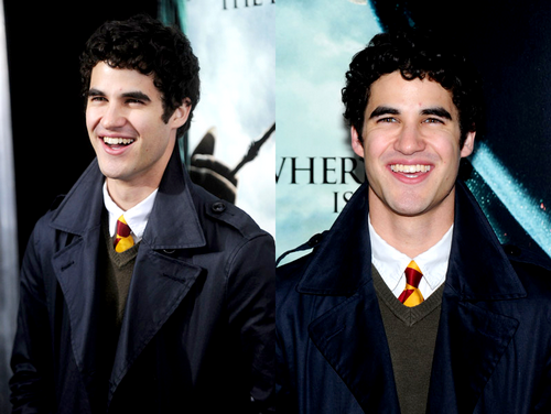 Darren Criss: the Harry Potter fan who made it to Hollywood.