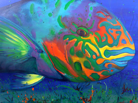 RAINBOW PARROT FISH - painting by  Amanda                      Reichelt-Brushett Location: These fish are found in abundance  in shallow reefs around the world, including the Red Sea, Indian Ocean  and the Pacific Ocean. Status: Least Concern Facts:Easily distinguished by their peculiar beak shaped mouth. With over 90  species of Parrot fish come in the most bright colors from parrot green,  to shades of blue, reds and yellows. This species is that  they are largely responsible for the fine white sand of many tropical  coral islands  today. While breaking of chunks of coral and rocky  substrates for algae they grind up the coral rock and excrete the same  as a fine sand which have over the thousands of years helped create the  small islands and sandy beaches in the Bahamas and Caribbean. One parrot  fish can produce upto 90kgs (approx. 198 pounds) of sand each year.  Source: wikipedia