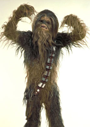 Being half Wookiee, this is a big day for me.Happy Wookiee Life Day!