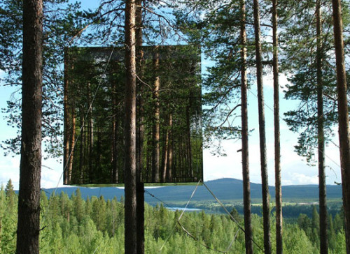 Treehotel, Sweden. In five years they hope to have 24 treehouses built by 24 different architects. I should be able to make it to Sweden by then.
