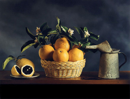 Jo Whaley, After Zurbarán, 1992. Chromogenic photograph, 30 x 24 in (via stilllifequickheart) SEE: FRANCISCO DE ZURBÁRAN, STILL LIFE WITH LEMONS, 1633