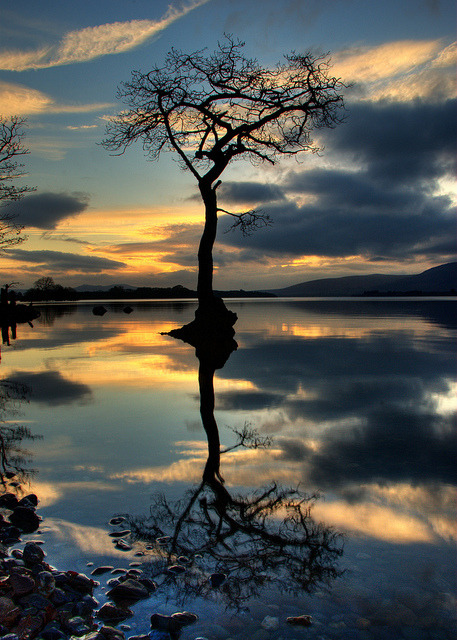 | ♕ |  Reflection in the Loch, Scotland by Russell Snowden llbwwb posted