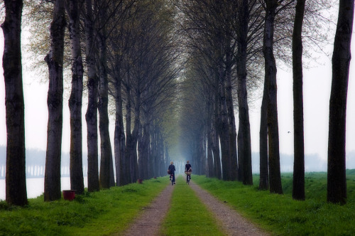 allthingseurope:  Going Home by buteijn Utrecht, The Netherlands