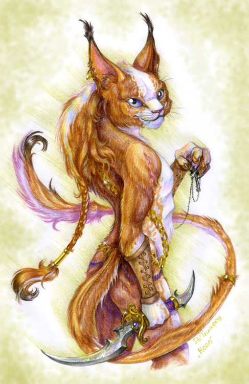 Caracal assasin by ~Esaashaa