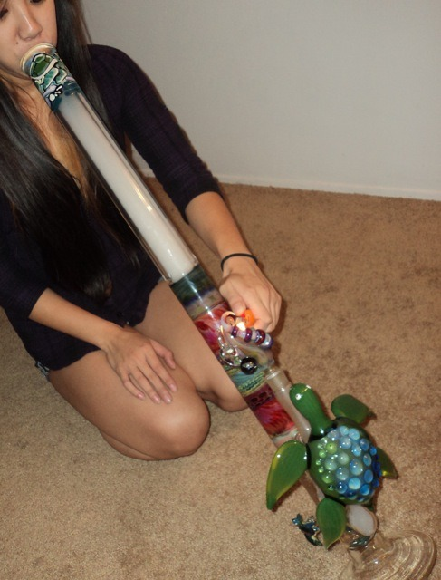 stonerparty:  thenativemexican:jndngrddd A TURTLE IS CRAWLING UP YOUR BONG  hands down, prettiest bong i have ever seen.