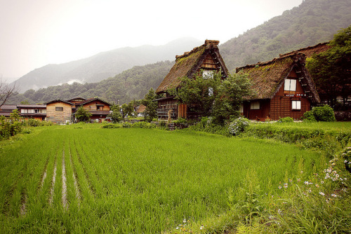 yokosojapan:  Shirakawa-gō (by willteeyang)