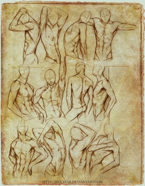 +BODY STUDY II+ by *jinx-star