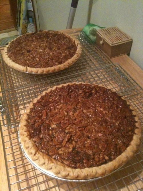 Pumpkin Pecan Pie (aka The-Best-of-Both-Worlds Pie) Ingredients: 3 eggs, divided 1 cup canned pumpkin (I used organic) 1 cup sugar, divided 1/2 teaspoon ground cinnamon 1/4 teaspoon ground ginger 1/8 teaspoon ground cloves dash of sea salt 2/3 cup dark corn syrup 2 tablespoons melted butter 1 teaspoon vanilla 1 cup coarsely chopped pecans 1 pie crust (use your favorite recipe or go for the pre-made kind) Preparation: Preheat oven to 350°. In a small bowl, mix together one egg, pumpkin, 1/3 cup sugar, cinnamon, ginger, cloves, and sea salt. Spread in pie crust. In a medium bowl, beat the remaining two eggs slightly. Stir in corn syrup and the remaining 2/3 cup sugar, the butter and vanilla; stir until well blended. Stir in pecans. Carefully spoon over pumpkin mixture. Bake 50 to 60 minutes or until filling is set around edge. Cool pie completely on wire rack. **I have had this recipe for the past few Thanksgivings, and I can't, for the life of me, remember where I found it. Somewhere on the internet, I presume.**