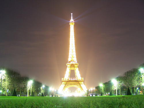 allthingseurope:  The Eiffel Tower at night by geoftheref